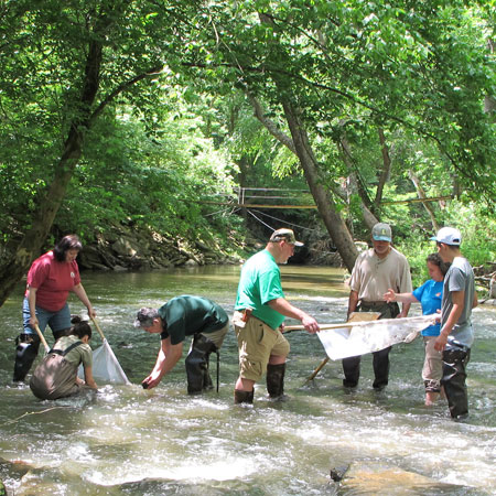 Seneca Creek macro invertebrate sampling for Save Our Streams